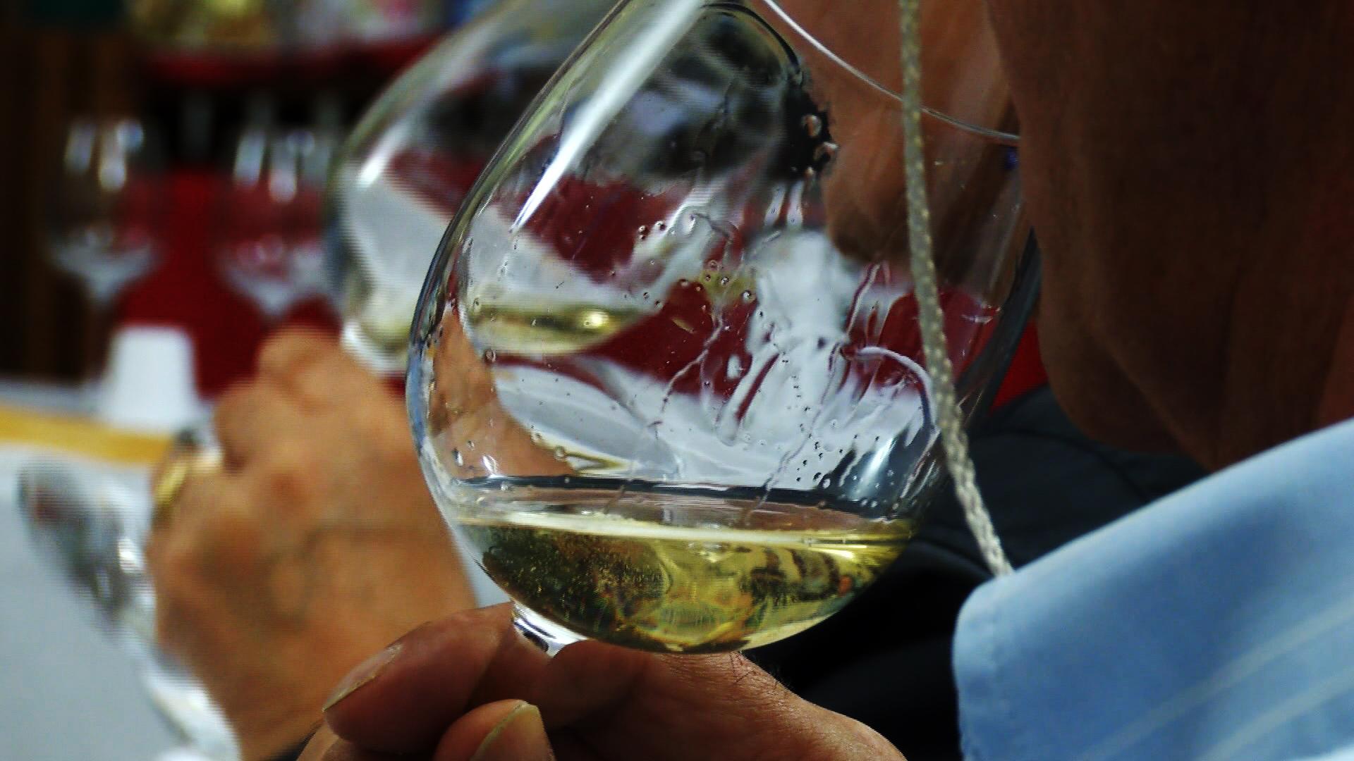 Come abbinare il vino bianco